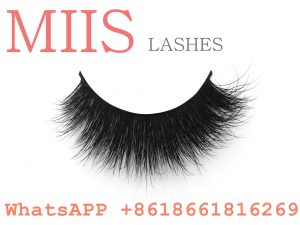 Lashes makeup cosmetics